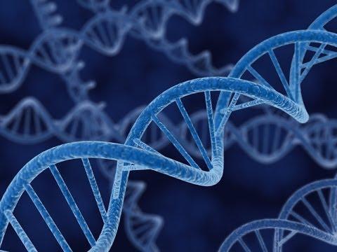 DNA FETALE